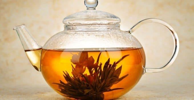 Découvrez la fleur de thé