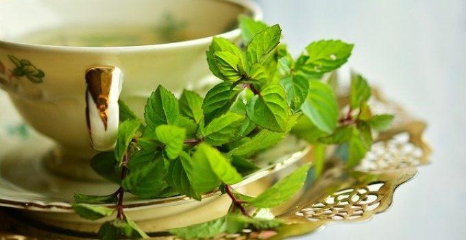 bienfaits thé à la menthe