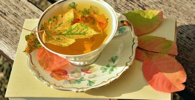 Tea Garden : comment créer son propre jardin à thé ?