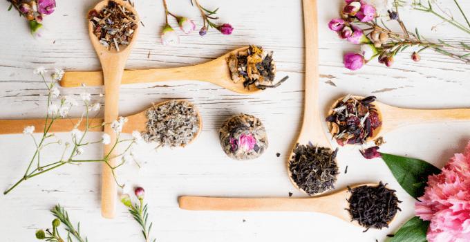 différence entre le thé et la tisane