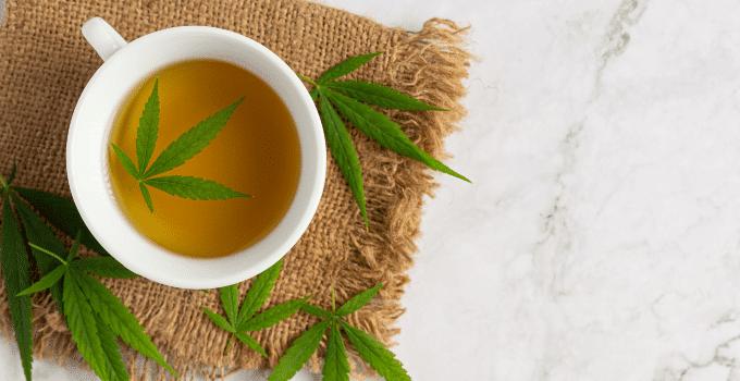 Comment préparer votre thé au CBD ?
